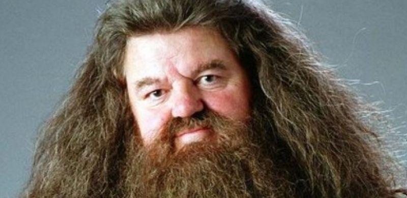 Ahora puedes alojarte en la cabaña de Hagrid