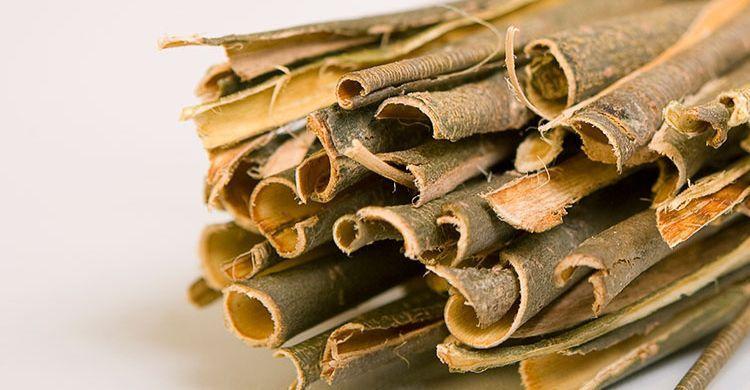 mejores plantas medicinales para cuidar los músculos y articulaciones del cuerpo