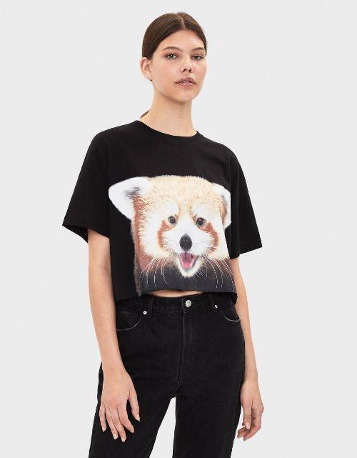Camiseta Panda de National Geographic de Bershka