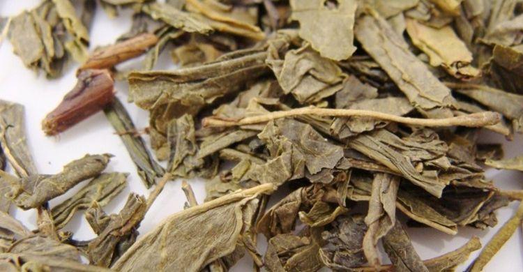 Hacer un tónico de té verde