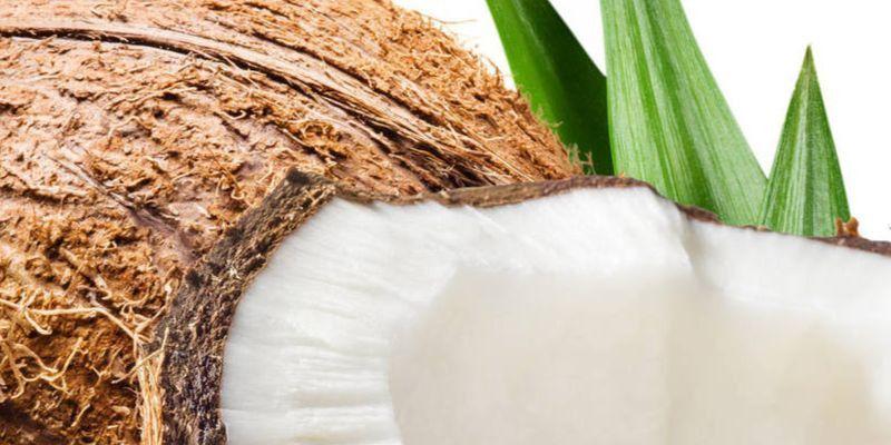 Usar aceite de coco en el pelo: beneficios y aplicaciones