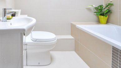 5 trucos caseros para acabar con los malos olores en el baño