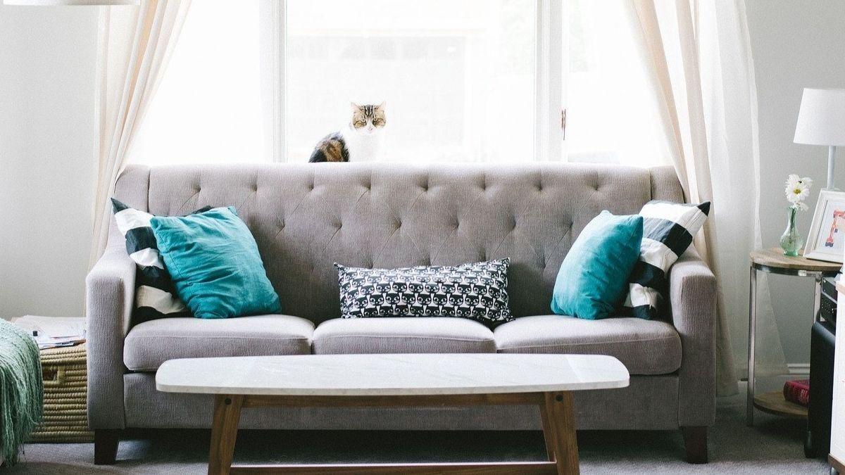 Cuáles son los principales errores en la decoración del hogar