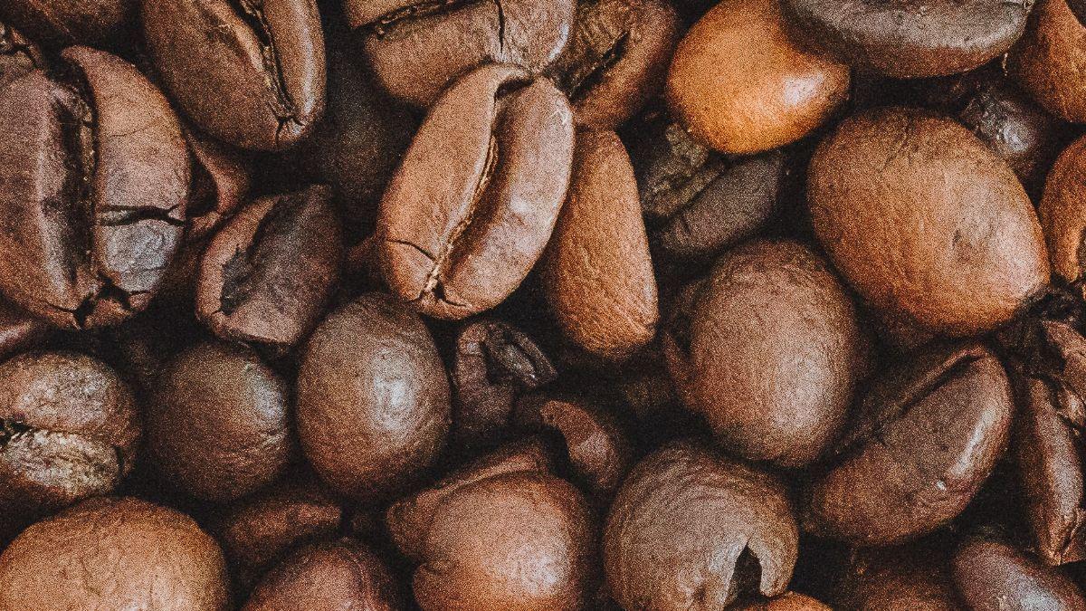 Mejor mascarilla de café para el pelo